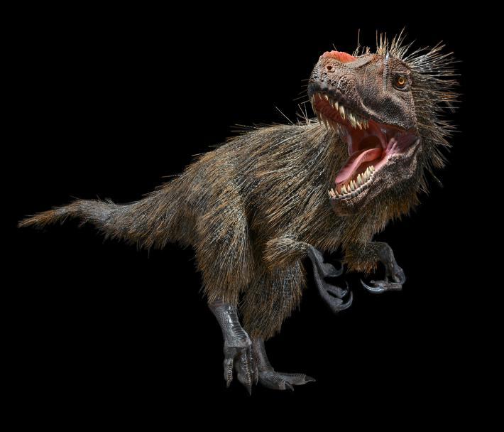 Dinozor - 001