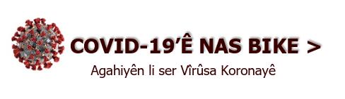 Covid-19 / SARS-CoV-2